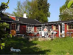 Ferienhaus, Ferienwohnung auf Westbornholm    -  Sommerhus Leopold 1